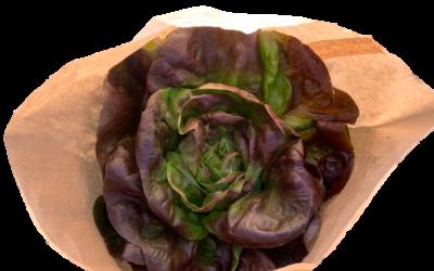 Sac kraft salade