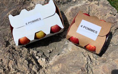 NOUVEAU – barquettes 4/6 pommes